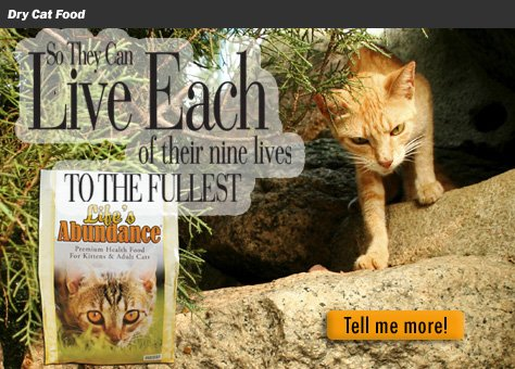 Life's Abundance cat food advertisement